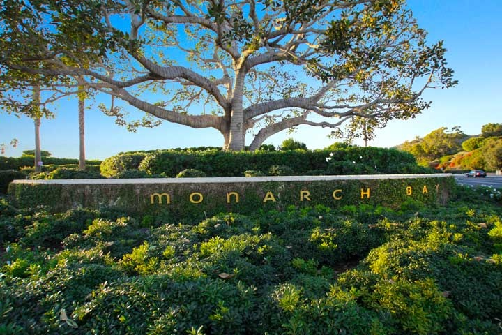 Monarch Bay Terrace Homes For Sale In Dana