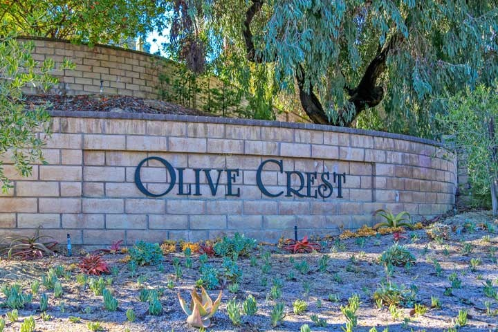 Olive Crest Community Homes For Sale In Encinitas, California