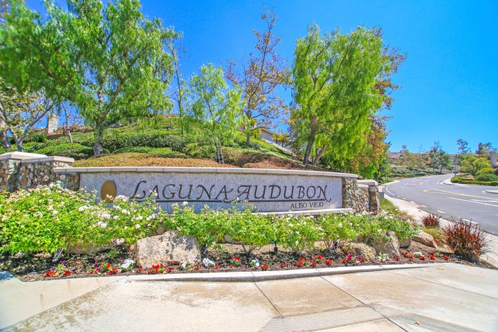 Laguna Audubon Aliso Viejo Homes for Sale