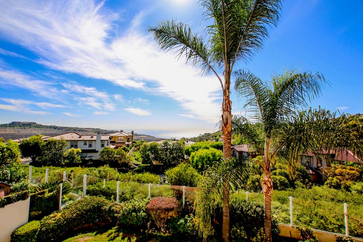 Ocean Ridge Estates Newport Coast Homes for Sale